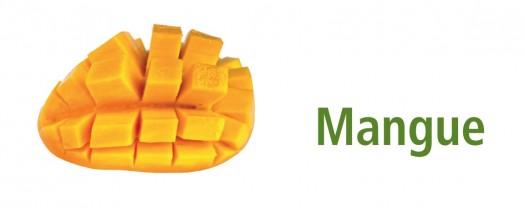 2,5L Mangue BIO